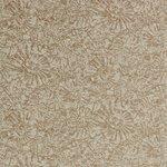 Anthology 07 Ammonite Sandstone 112561