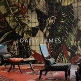 Daisy James behang The Icon