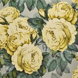 Designers Guild The Rose Mimosa PJD6002/05