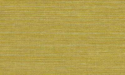 Arte Marsh  31502