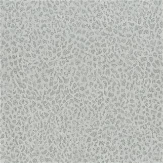 CIOTTOLI - PLATINUM PDG680/01