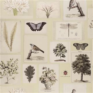 Designers Guild Flora and Fauna Canvas