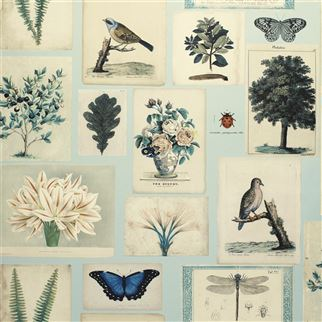 Designers Guild Flora and Fauna Cloud Blue