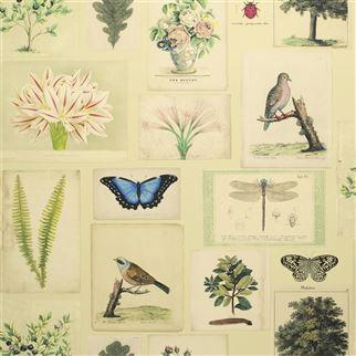 Designers Guild Flora and Fauna Parchment