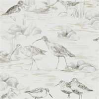 Sanderson Estuary Birds Chalk Sepia 216493