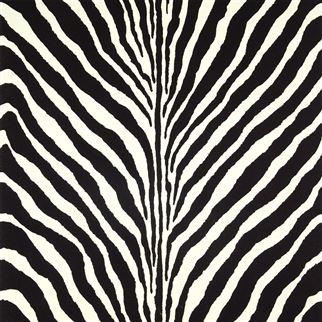 Ralph Lauren Bartlett Zebra Charcoal PRL5017/04