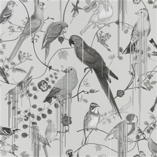 Christian Lacroix Birds Sinfonia Graphite PCL7017/08