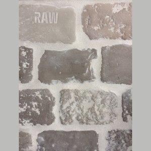 RAW STONES Terpstra Stones
