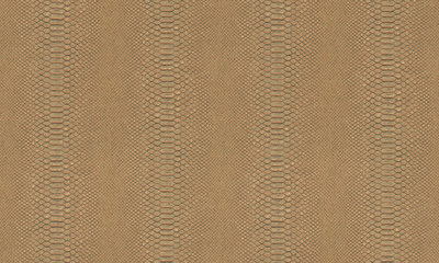 Arte Python 10412