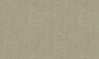 Arte Python 10403