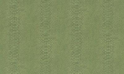 Arte Python 10400
