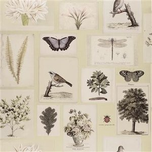 DG Flora and Fauna Canvas PJD6001/03